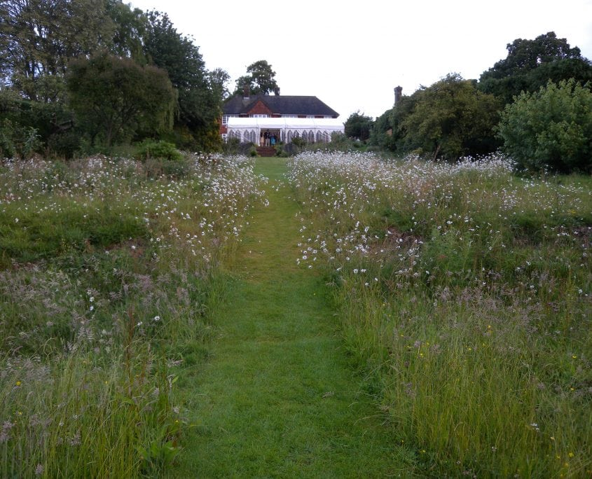 Photo of Wildflower Meadow Garden with Large Pond East Sussex