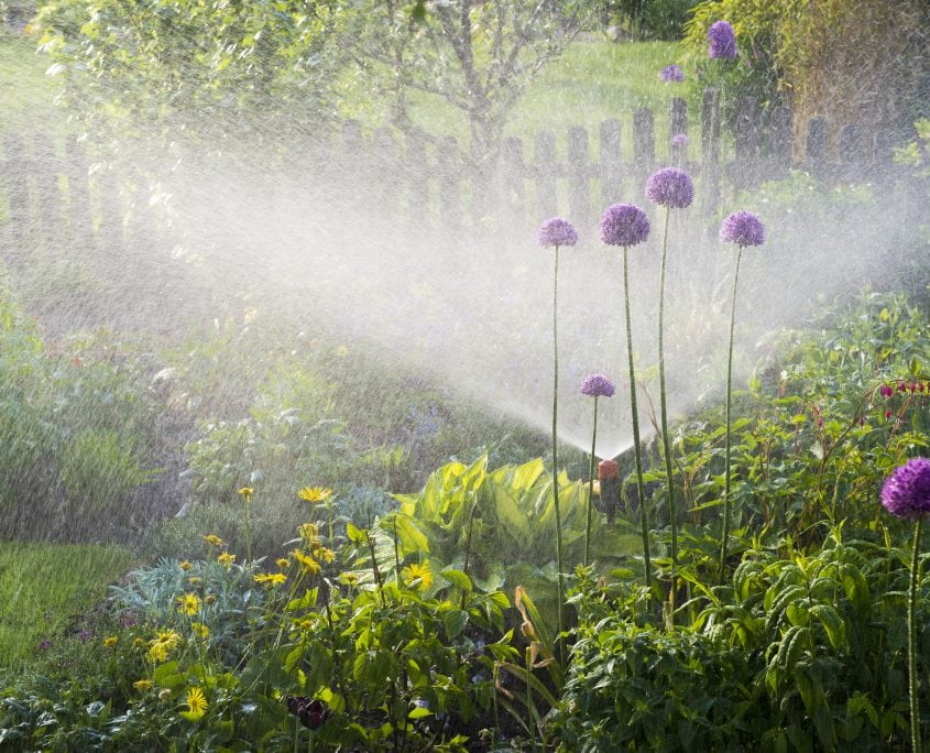 a green landscape design with flowers and water