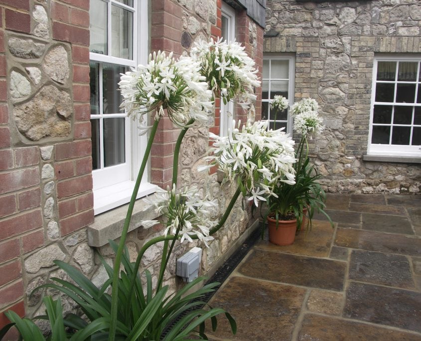 Photo of Harbour Side Courtyard Garden Isle of Wight