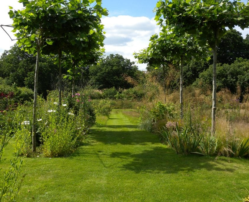 Photo of Large Country Garden East Sussex