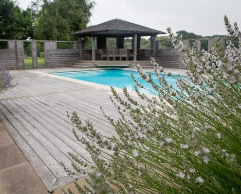 Photo of Country Garden with Pool and Poolhouse Poolside Olives project East Sussex