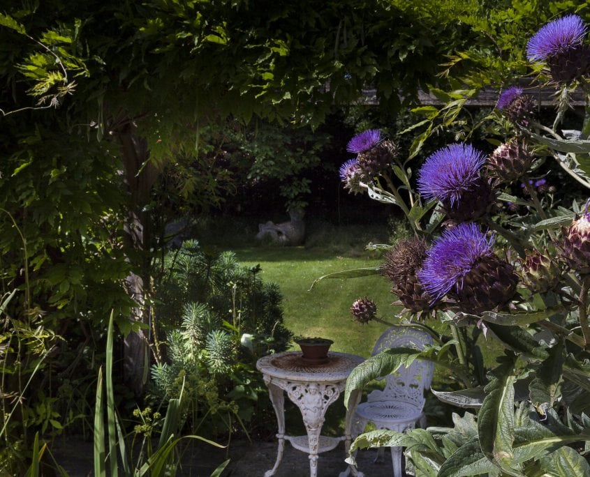 Photo of Magical Garden in East Sussex