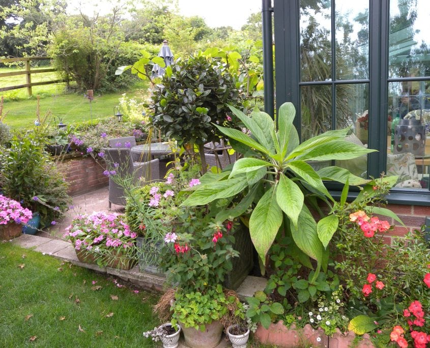 Photo of Multi Level Country Garden Isle of Wight