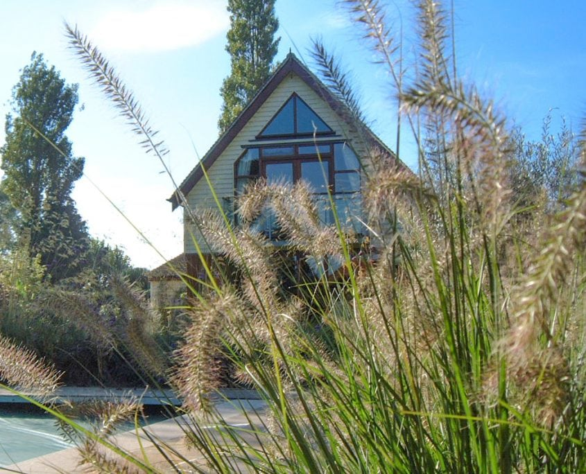Photo of ornamental grasses poolside west sussex