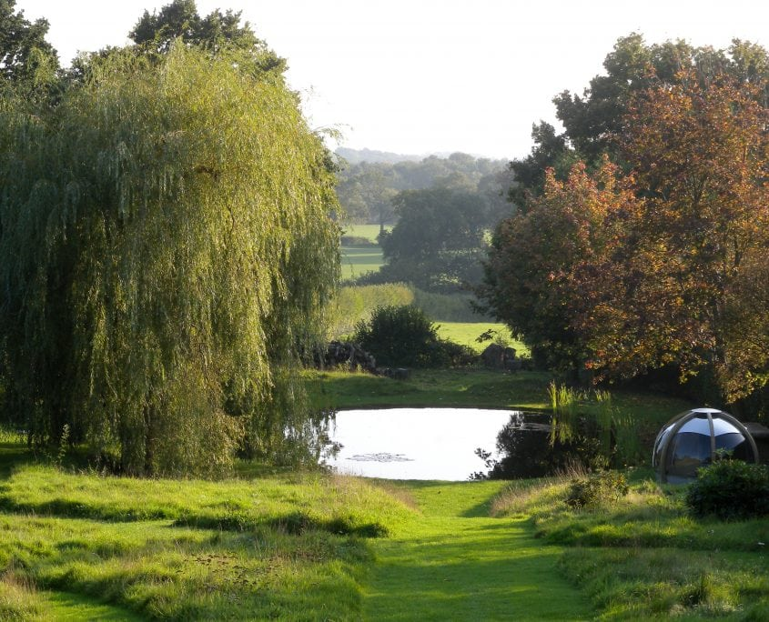 Photo of english country garden with bespoke built pond Sussex