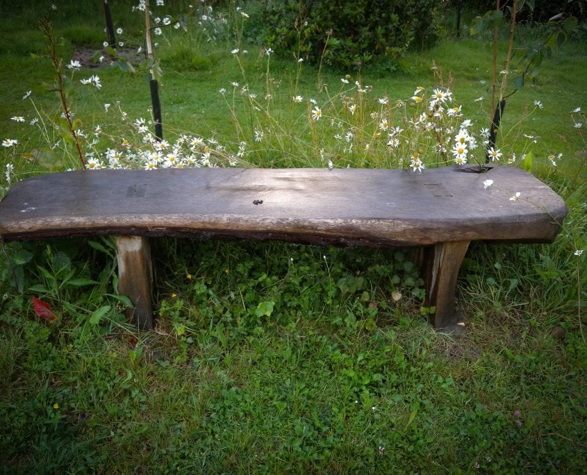 Photo of bespoke driftwood bench in english country garden sussex