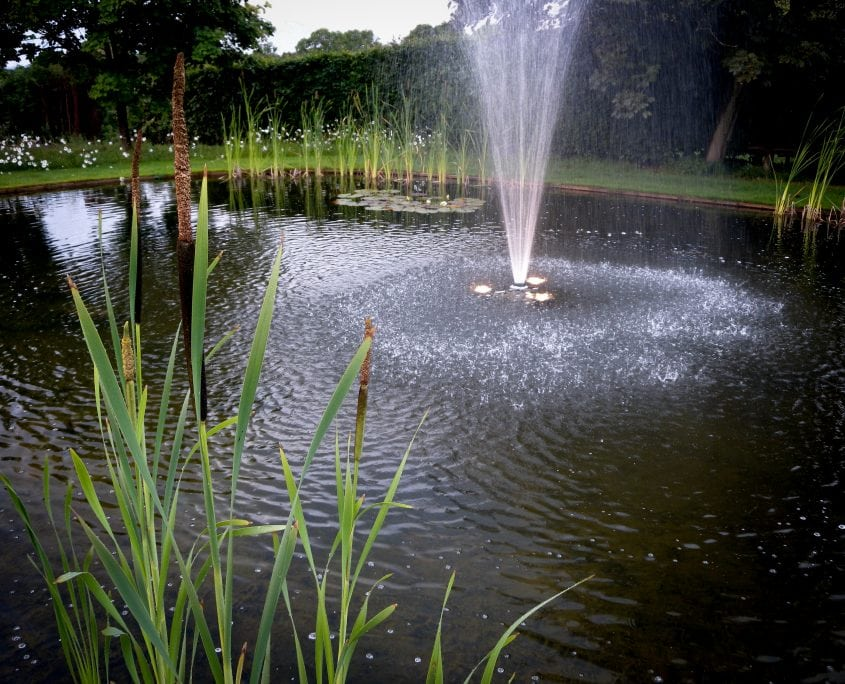 Photo of english country garden with pond fountain and wildflower meadow