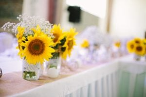 A photo of sunflower arrangements as table decorations at a Wedding reception